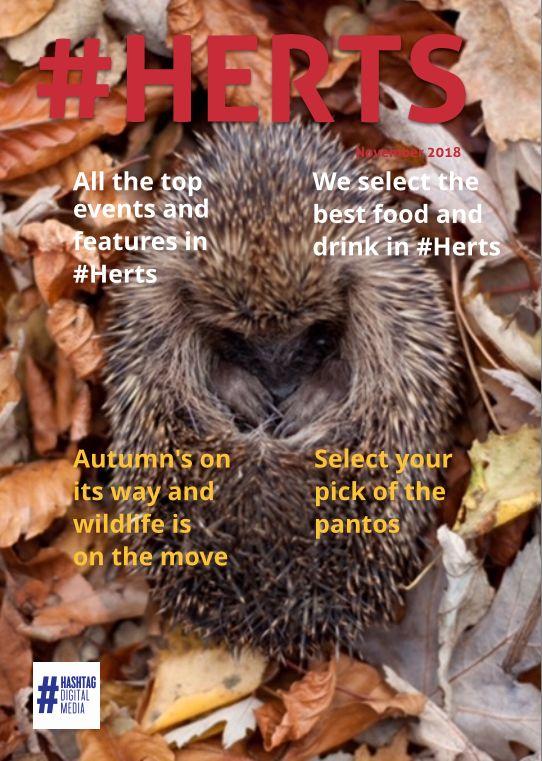 Lord Lieutenant writes for #HERTS November online Magazine